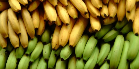4 banane - Copy