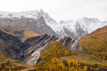Foto: boredpanda.com/golden-valley-nature-photography-la-claree-thomas-tourral-france/