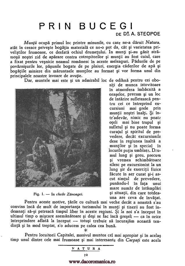 Natura : Revistă ştiinţifică de popularizare, 19, nr. 09, 15 noiembrie 1930