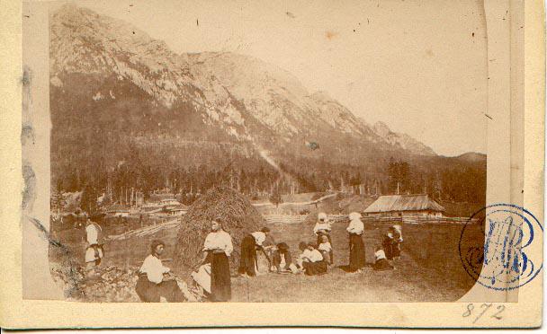 Strânsul fânului, 1866 (zona nu este menționată). Foto: europeana.eu