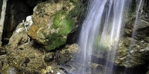 Foto: adriandaniciuc.blogspot.ro