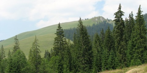 Vârful Lucina (Foto: panoramio.com)